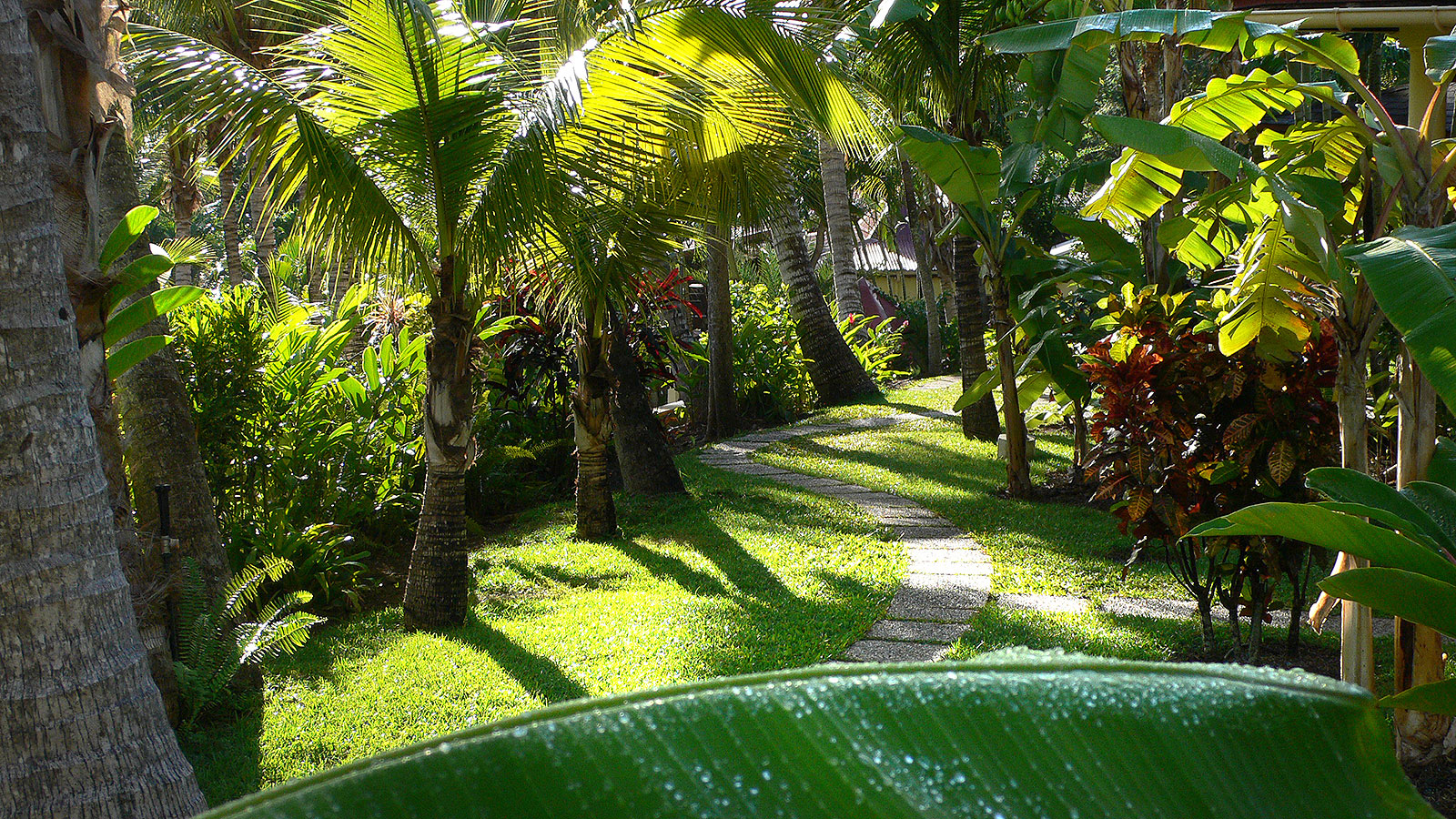 Habitation grande anse for Jardin tropical guadeloupe