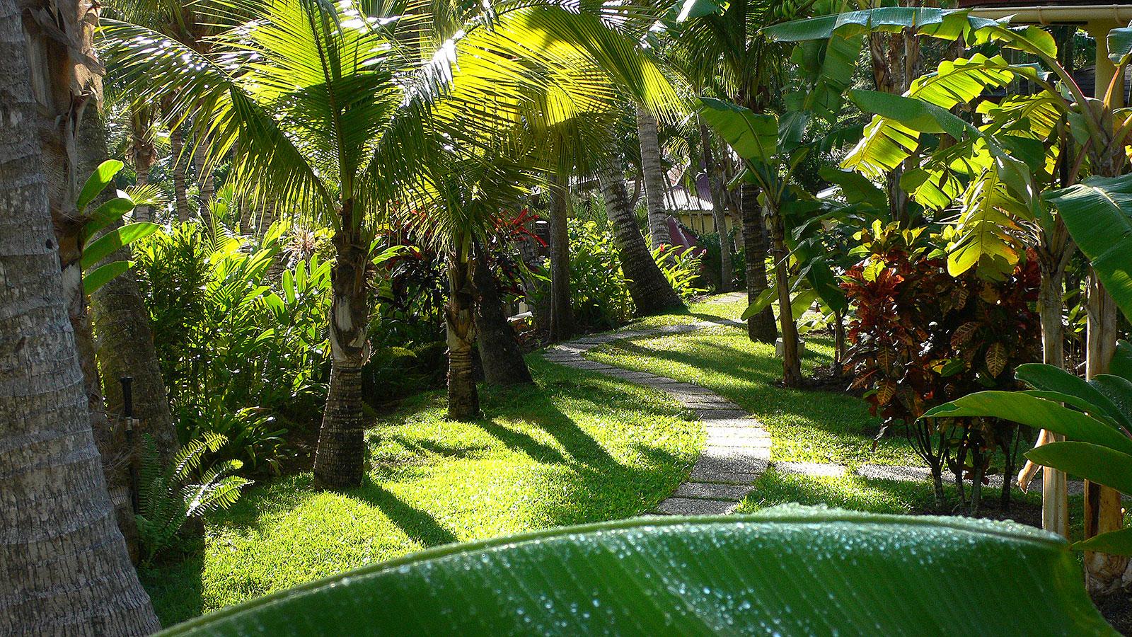 Habitation grande anse for Jardin botanique guadeloupe