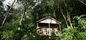 Jungle Bay Resort & Spa