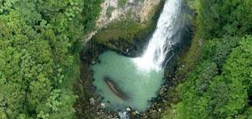 Jungle Bay Dominica